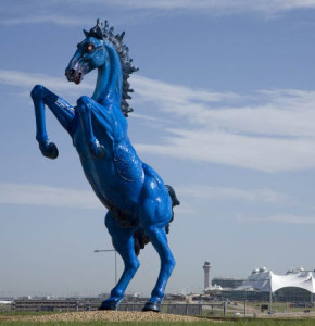 denver horse